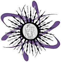 lasso-logo
